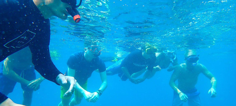 www.thefunkyturtle.com half day snorkel koh tao in group