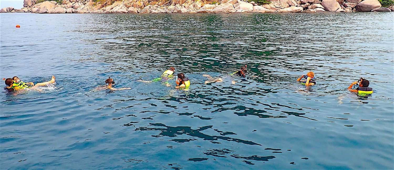 www.thefunkyturtle.com half day snorkeling trip koh tao