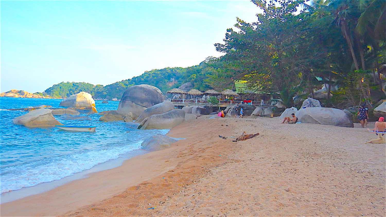 www.thefunkyturtle.com hin wong beach koh tao thailand