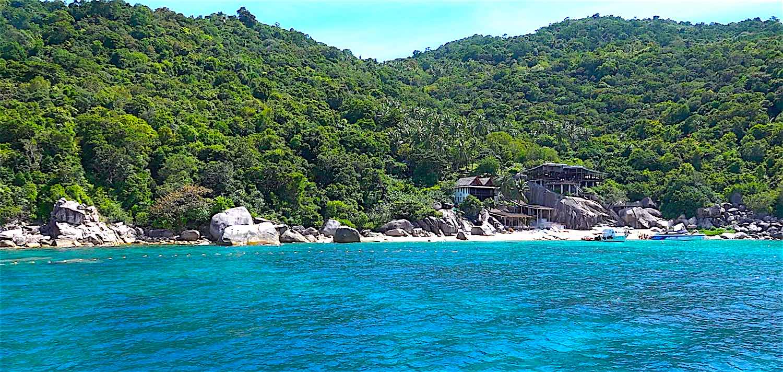www.thefunkyturtle.com mango bay snorkeling tours