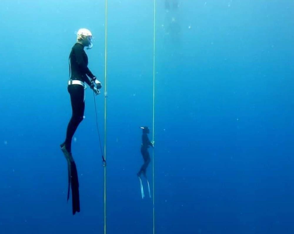 www.thefunkyturtle.com master freediver course koh tao