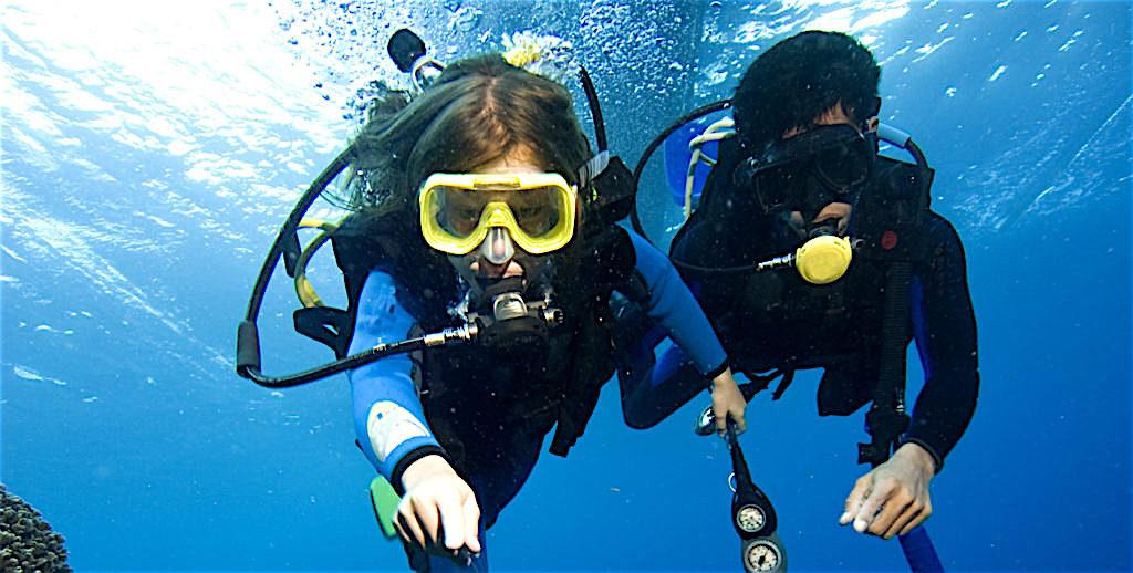 www.thefunkyturtle.com open water for kids on koh tao