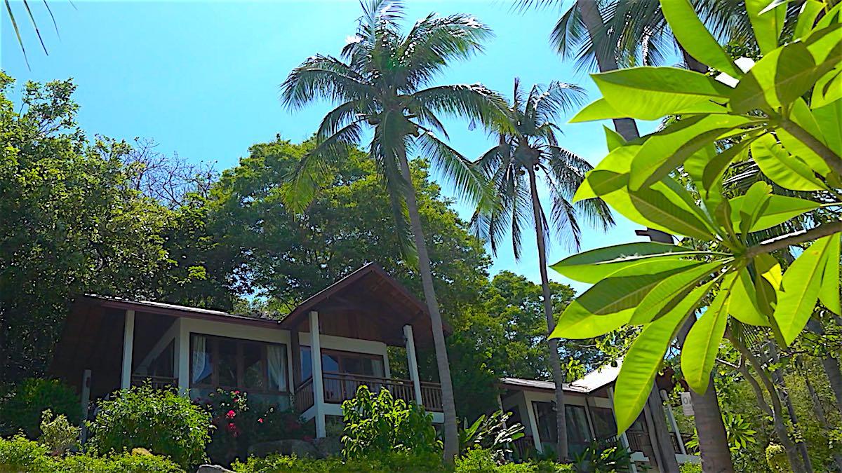 www.thefunkyturtle.com seaview bungalows koh tao