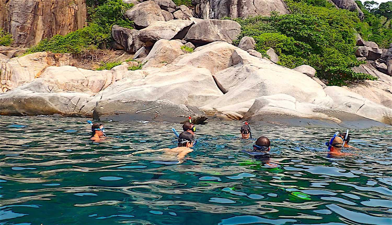 www.thefunkyturtle.com shark bay snorkel trip around koh tao