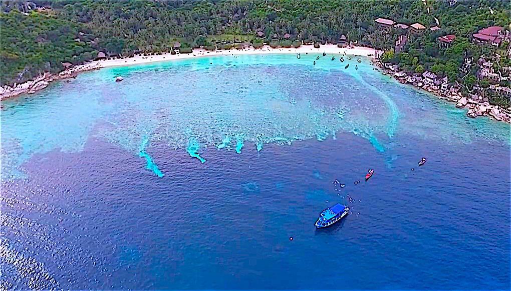 www.thefunkyturtle.com shark bay snorkeling