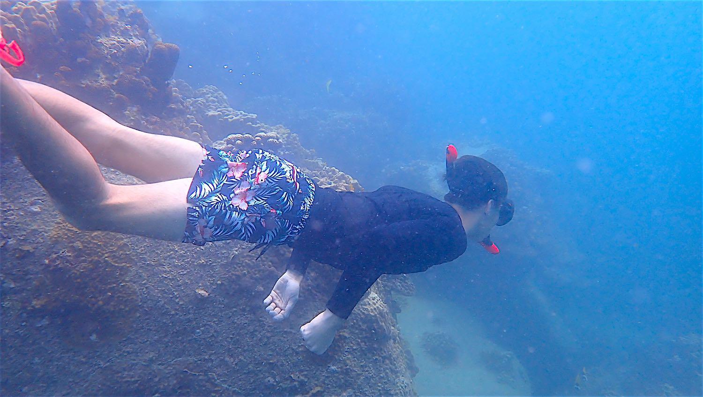 www.thefunkyturtle.com snorkel around koh tao