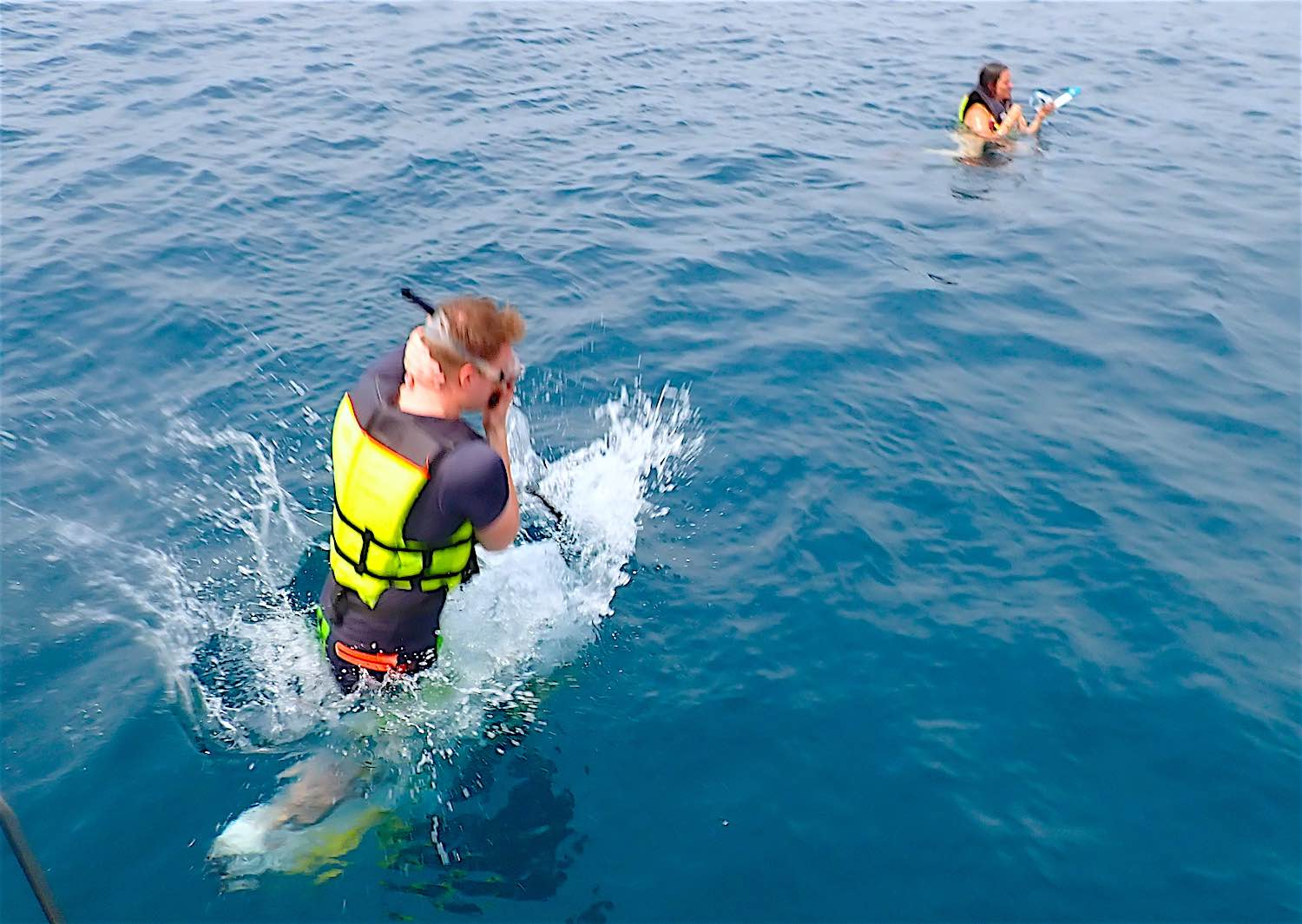 www.thefunkyturtle.com snorkel entry full day koh tao