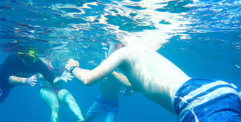 www.thefunkyturtle.com snorkel fun full day koh tao