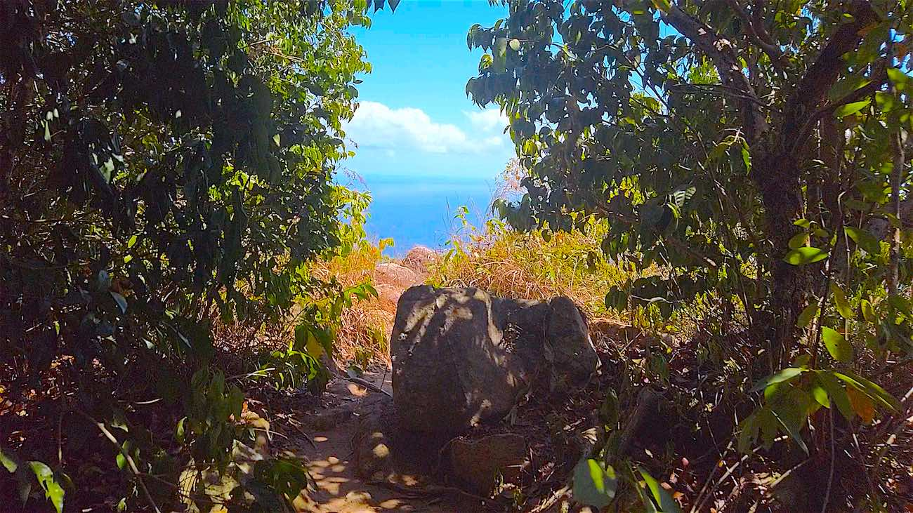 www.thefunkyturtle.com access to tanote peak viewpoint koh tao