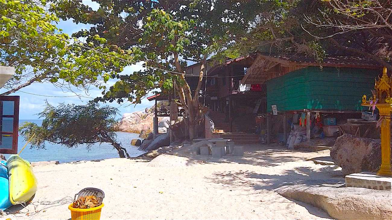 www.thefunkyturtle.com accommodation at tao thong beach koh tao