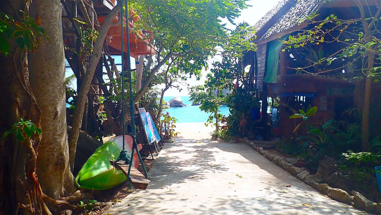 www.thefunkyturtle.com accommodation tanote beach koh tao