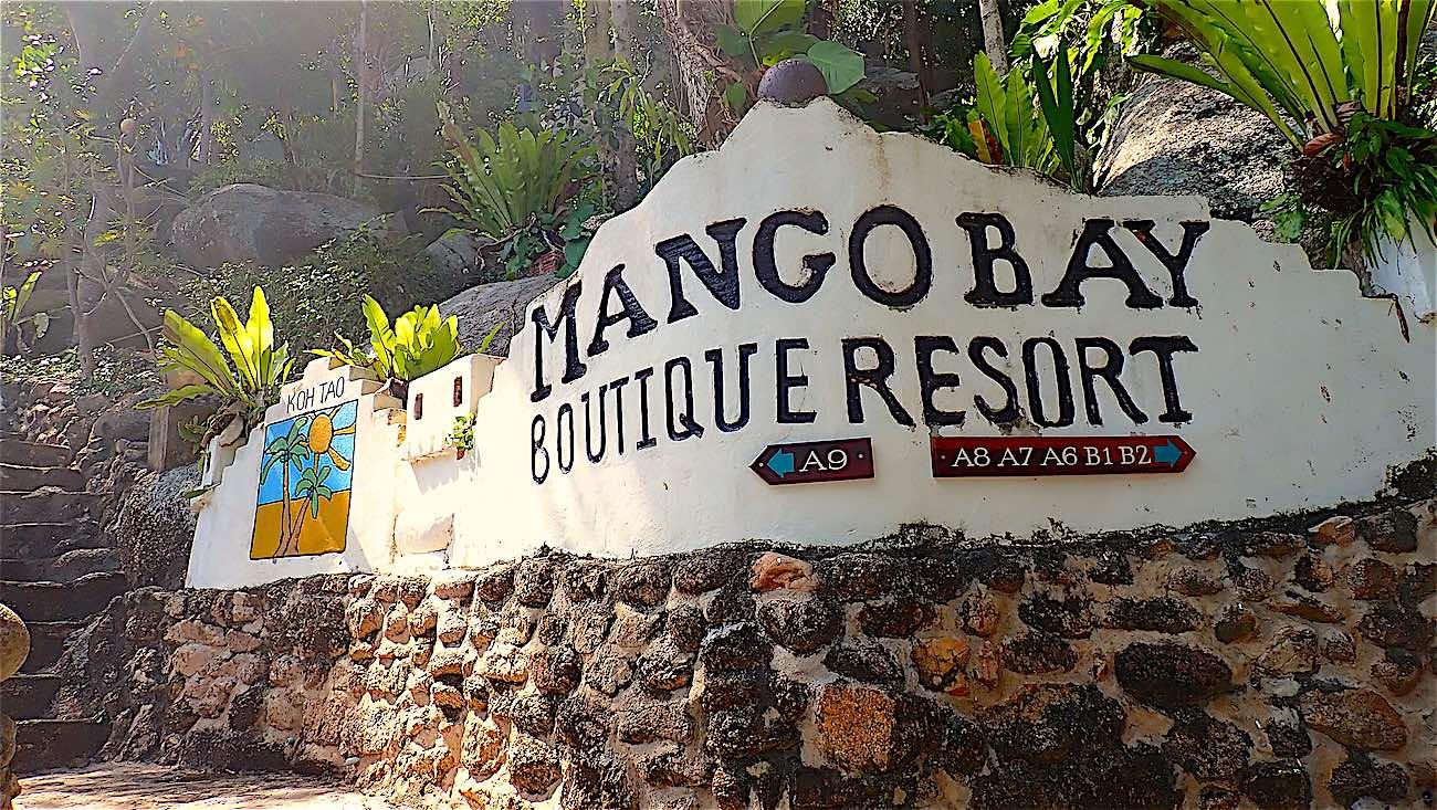 www.thefunkyturtle.com mango bay resort