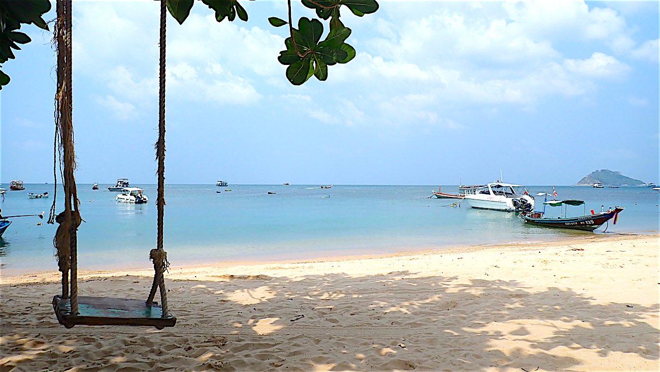 www.thefunkyturtle.com relax on mae haad beach koh tao thailand