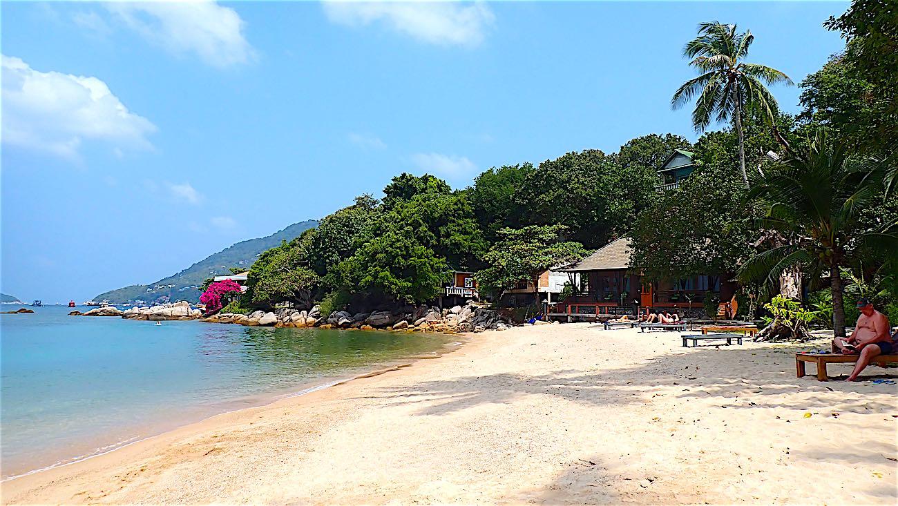 www.thefunkyturtle.com white sandy mae haad beach koh tao thailand