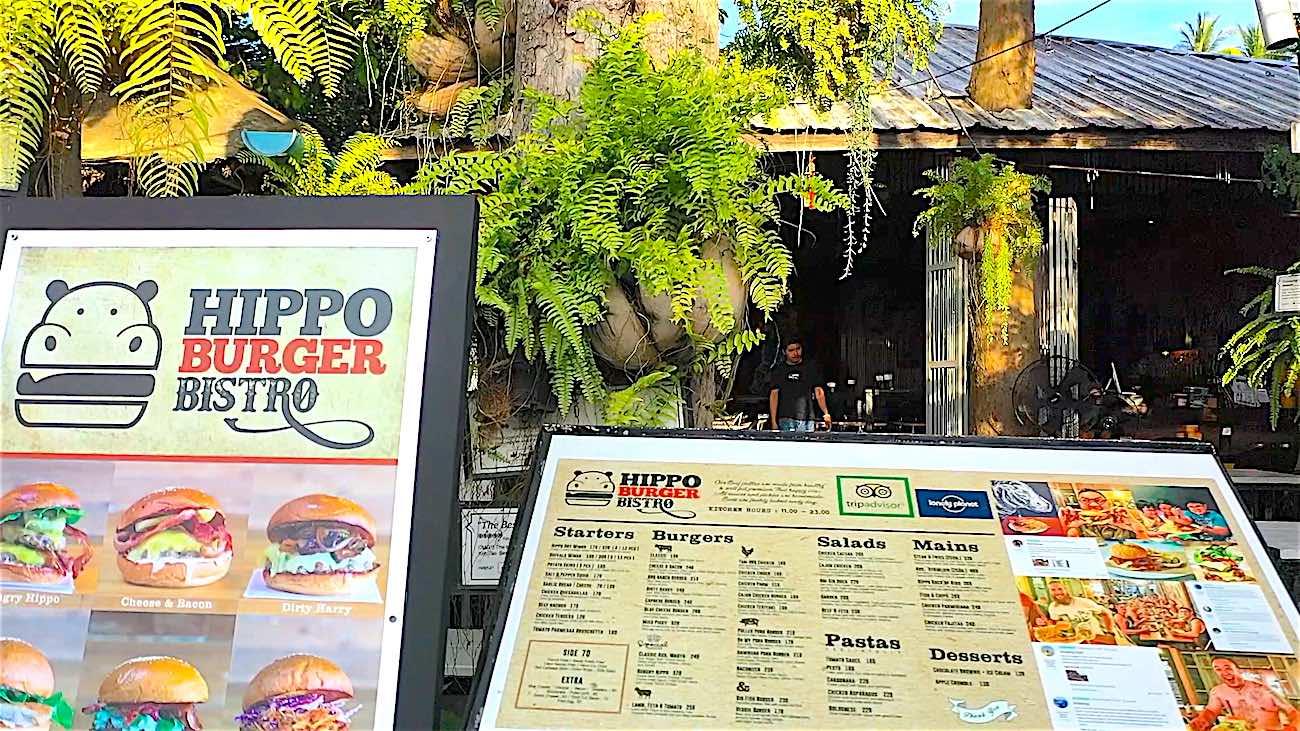 www.thefunkyturtle.com hippo burger koh tao
