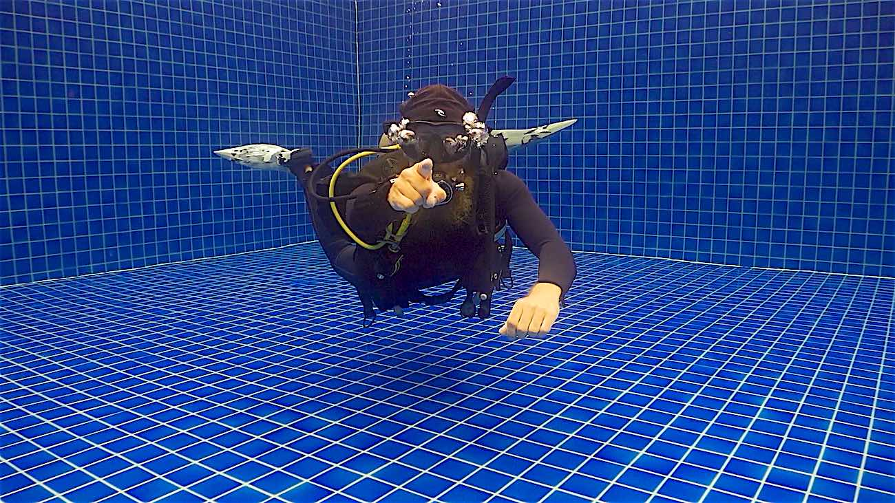 www.thefunkyturtle.com best reasons to do divemaster course koh tao