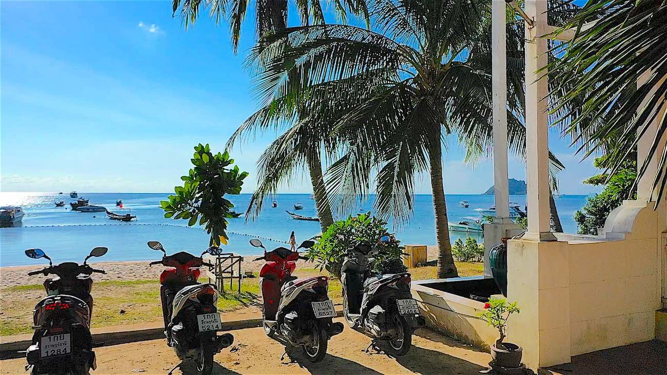www.thefunkyturtle.com cheap scooter rental koh tao