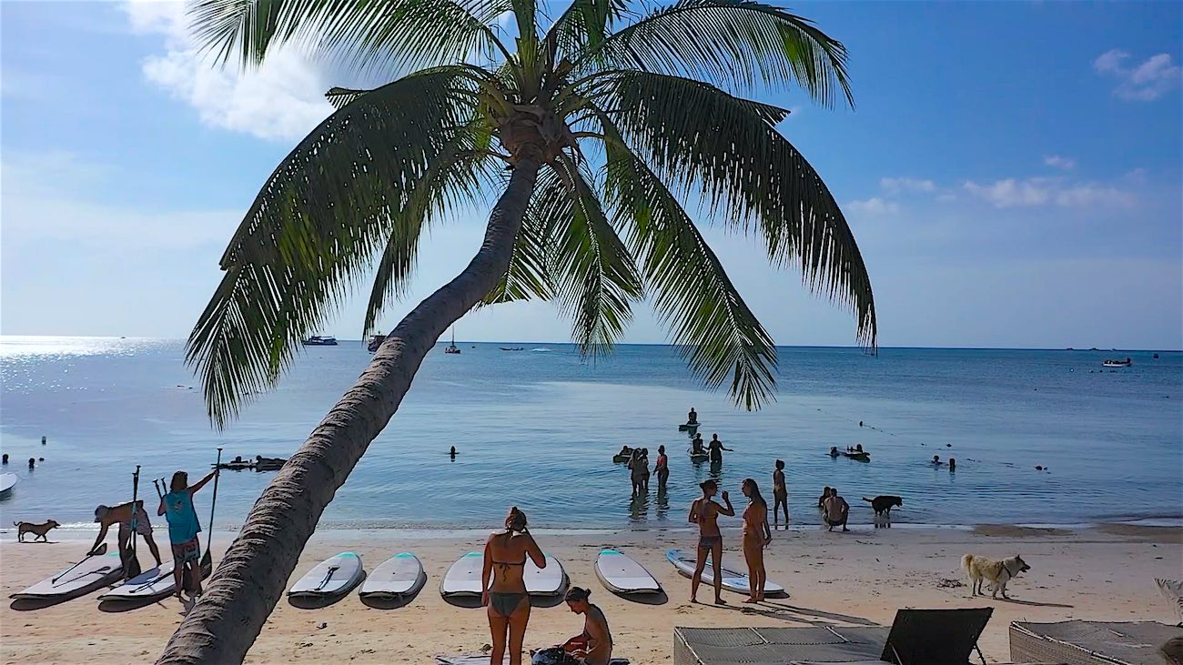 www.thefunkyturtle.com sup tao paddleboarding in sairee beach koh tao