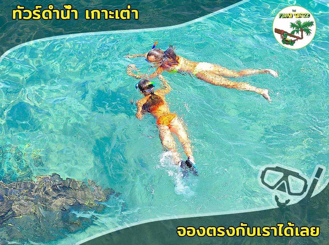 best snorkel tour Koh Tao