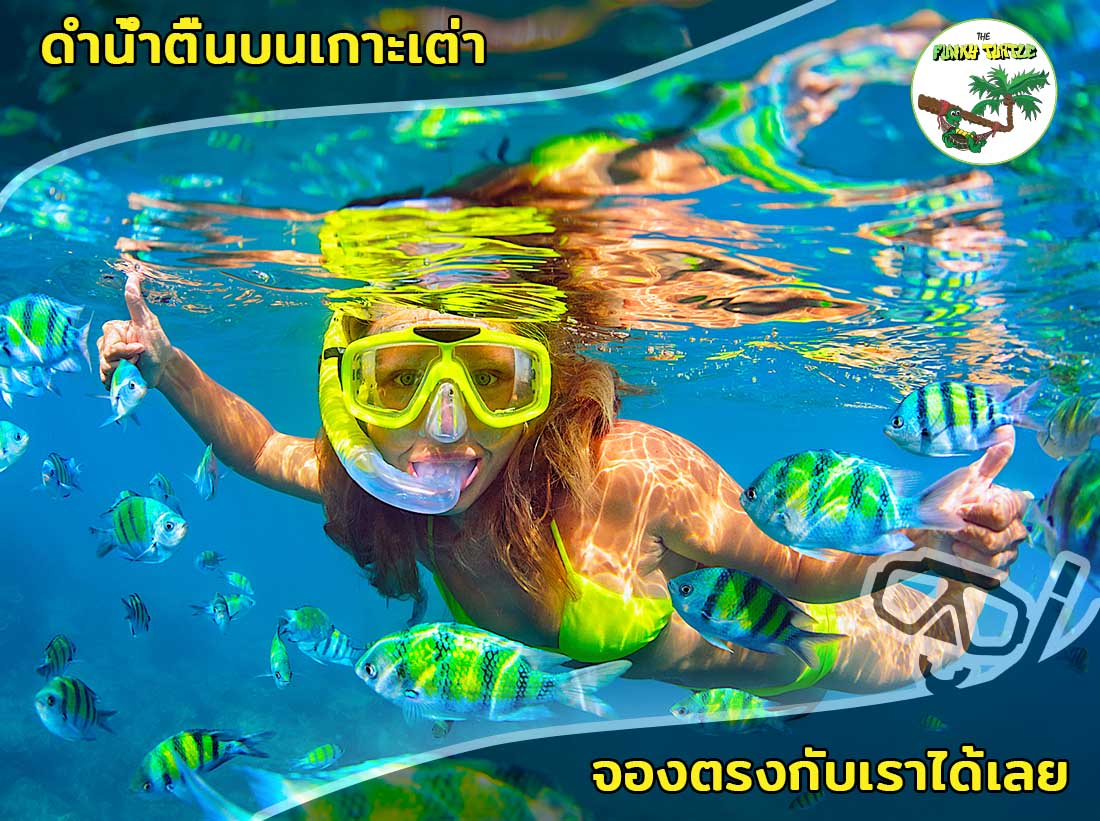 best snorkeling trips in thailand
